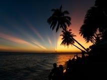 Een groep die mensen op de zonsondergang met palmen letten stock foto