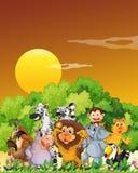 Een groep dieren bij het bos Stock Foto's