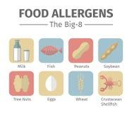 Een groep het acht belangrijkste een allergie veroorzakende voedsel wordt vaak bedoeld als groot-8 Royalty-vrije Stock Afbeeldingen