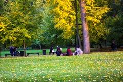 Een groep Japanse toeristen die een picknick in Tsaritsyno-park hebben stock fotografie