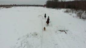 Een groep jonge vrouwen die paarden berijden op een sneeuwgebied Het gaan naar de camera stock video