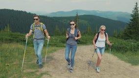 Een groep jongeren beklimt een berg Vrienden op een stijging stock video