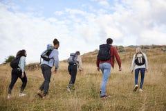 Een groep van vijf jonge volwassen vrienden die over een gebied naar de top wandelen, achtermening royalty-vrije stock afbeelding