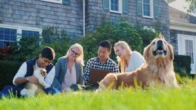Een groep vriendenrust samen, zit op het gazon, naast hen een puppy en een hond Gebruik laptop stock videobeelden