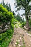 Een grondweg met gras, een kreupelbosje met bomen zonder bladeren en wolken op een blauwe hemel wordt behandeld die royalty-vrije stock foto