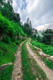 Een grondweg met gras, een kreupelbosje met bomen zonder bladeren en wolken op een blauwe hemel wordt behandeld die stock fotografie