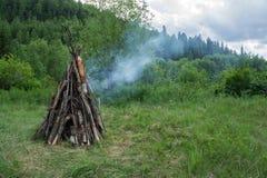 Een groot vuur van de droge verlamde houten brandwonden in het bos, tegen de achtergrond van het bos; stock afbeelding