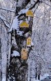 Een grote boomstam van snow-covered hout waarop van triplex ronde, gesneden Vensters en deuren voor kinderen om worden gemaakt te royalty-vrije stock afbeeldingen
