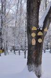 Een grote boomstam van snow-covered hout waarop van triplex ronde, gesneden Vensters en deuren voor kinderen om worden gemaakt te stock afbeelding