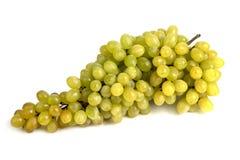 Een grote bos van rijpe sappige druiven Royalty-vrije Stock Fotografie