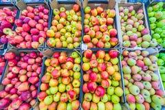 Een grote en gevarieerde selectie die van witte appelen in dozen liggen stock afbeelding