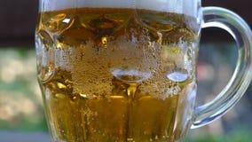 Een grote glasmok met bier stock video