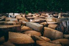 Een grote hoeveelheid brandhout van pijnboom stock afbeeldingen