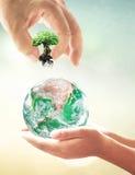 Een grote installatie in groene planeet Stock Foto