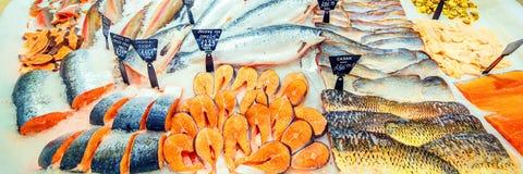 Een grote selectie die van verse vissen in het ijs op de teller van de supermarkt liggen stock foto's