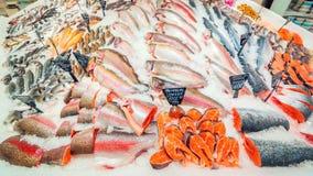 Een grote selectie die van verse vissen in het ijs op de teller van de supermarkt liggen royalty-vrije stock afbeelding
