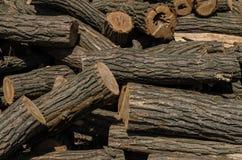 Een grote stapel van groot acaciabrandhout royalty-vrije stock foto's