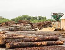 Een grote stapel van houtlogboeken bij een houtbewerkingsinstallatie, een zaagmolen, hout royalty-vrije stock afbeeldingen
