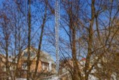 Een grote transparante ijskegel op aard tegen een achtergrond van boom vertakt zich en een blauwe hemel stock fotografie