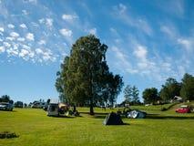 Een grote vergankelijke boom met tenten De zomer in kamp Stock Afbeelding