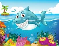 Een haai in het overzees met koralen vector illustratie