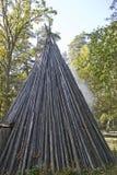 Een haard in het hout stock afbeelding