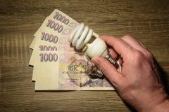 Een hand die een ecologische Europese buisbol houden royalty-vrije stock foto's