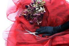 een hand van vrouwen Royalty-vrije Stock Fotografie