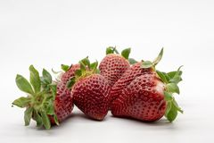 Een handhoogtepunt van aardbeien stock foto