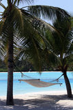 Een hangmat onder de bomen die het strand overzien, Royalty-vrije Stock Afbeeldingen