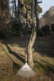 Een hark die tegen een boom bij zonsondergang leunen Stock Foto