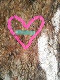 Een hart in een boom royalty-vrije stock afbeeldingen