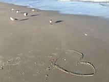 Een hart en zeemeeuwen Stock Foto