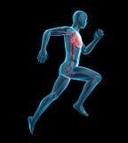 Een hart van runnervector illustratie