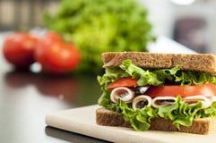 Een heerlijke sandwich van Turkije Stock Afbeelding