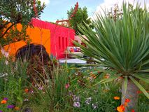 Een heldere tuin met bloemen en bomen Royalty-vrije Stock Afbeeldingen