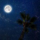 Een hemel van de Nacht Stock Foto's