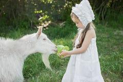 Een herdersmeisje in een witte kleding en een bonnet voedt een geit met koolbladeren stock foto
