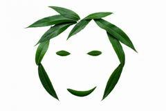 Een het glimlachen gezicht, met groene bladeren wordt gevoerd dat Het concept naturalness en liefde van aard royalty-vrije stock fotografie