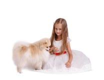 Een het glimlachen jonge damezitting op een grond die op een witte achtergrond wordt geïsoleerd Een meisje met een hond Het conce Royalty-vrije Stock Afbeelding