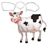 Een het glimlachen koe Stock Fotografie
