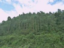 Een hoek van de bergen Stock Foto's