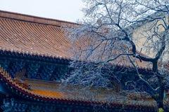 Een hoek van de de wintertempel Royalty-vrije Stock Foto's