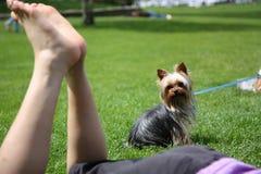 Een hond let op een vrouwenrust Royalty-vrije Stock Afbeeldingen