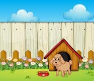 Een hond met een hondhuis binnen de omheining Stock Foto