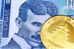 Een honderd Servisch dinarbankbiljet met een gouden Chinees pandamuntstuk stock afbeelding