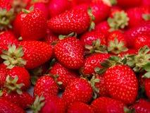 Een hoogste mening over verse rijpe aardbeien Het concept van het voedsel stock foto