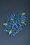 Een hoop van zoete en natuurlijke bosbessen met munt op een donkerblauwe achtergrond Organische ingrediënten voor gezonde snacks Royalty-vrije Stock Fotografie