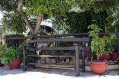 Een houten bank onder een boom Stock Foto's