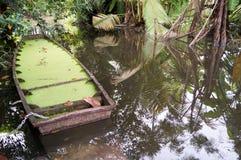 Een houten boot verdrinken binnen en het eendekrooshoogtepunt royalty-vrije stock fotografie